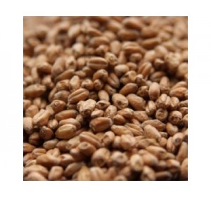 AVANGARD WHEAT MALT 1 LB